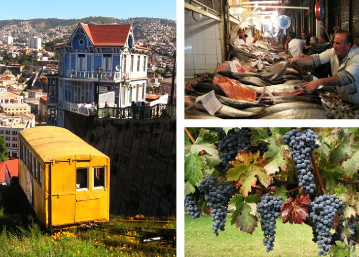 Chile Farm to Table Food and Wine