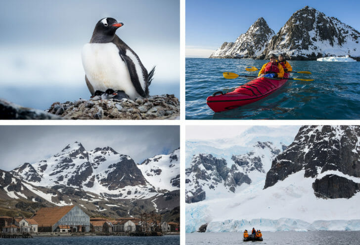 Best Antarctica Cruise